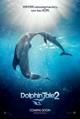 Dolphin Tale 2 (2014) มหัศจรรย์โลมาหัวใจนักสู้