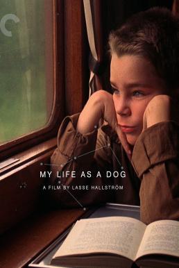 My Life as a Dog (Mitt liv som hund) (1985)