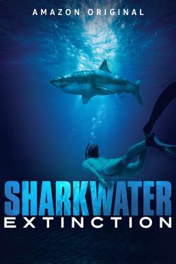 Sharkwater Extinction 2018 การสูญพันธุ์ของปลาฉลาม
