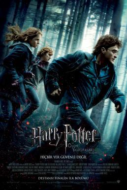 Harry Potter 7.1 and the Deathly Hallows Part 1 (2010) แฮร์รี่ พอตเตอร์ กับ เครื่องรางยมฑูต