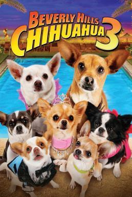 Beverly Hills Chihuahua 3 Viva La Fiesta! (2012) คุณหมาไฮโซ โกบ้านนอก 3