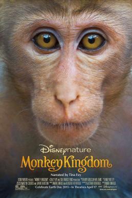 Disneynature Monkey Kingdom (2015) อาณาจักรลิง จากป่าไม้สู่ป่าเมือง