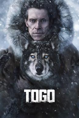 Togo (2019) หมาป่า โตโก